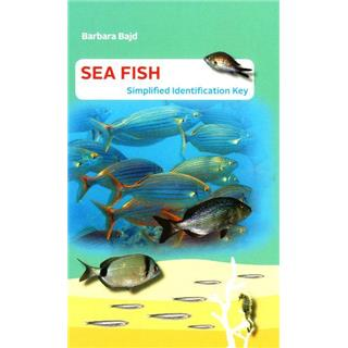 Sea Fish: Simplified Identification Key